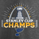 Picture of St. Louis Blues Fanatics Branded 2019 Stanley Cup Champions Parade Celebration T-Shirt - Heather Charcoal
